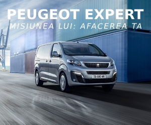 Peugeot EXPERT - banner mic HP